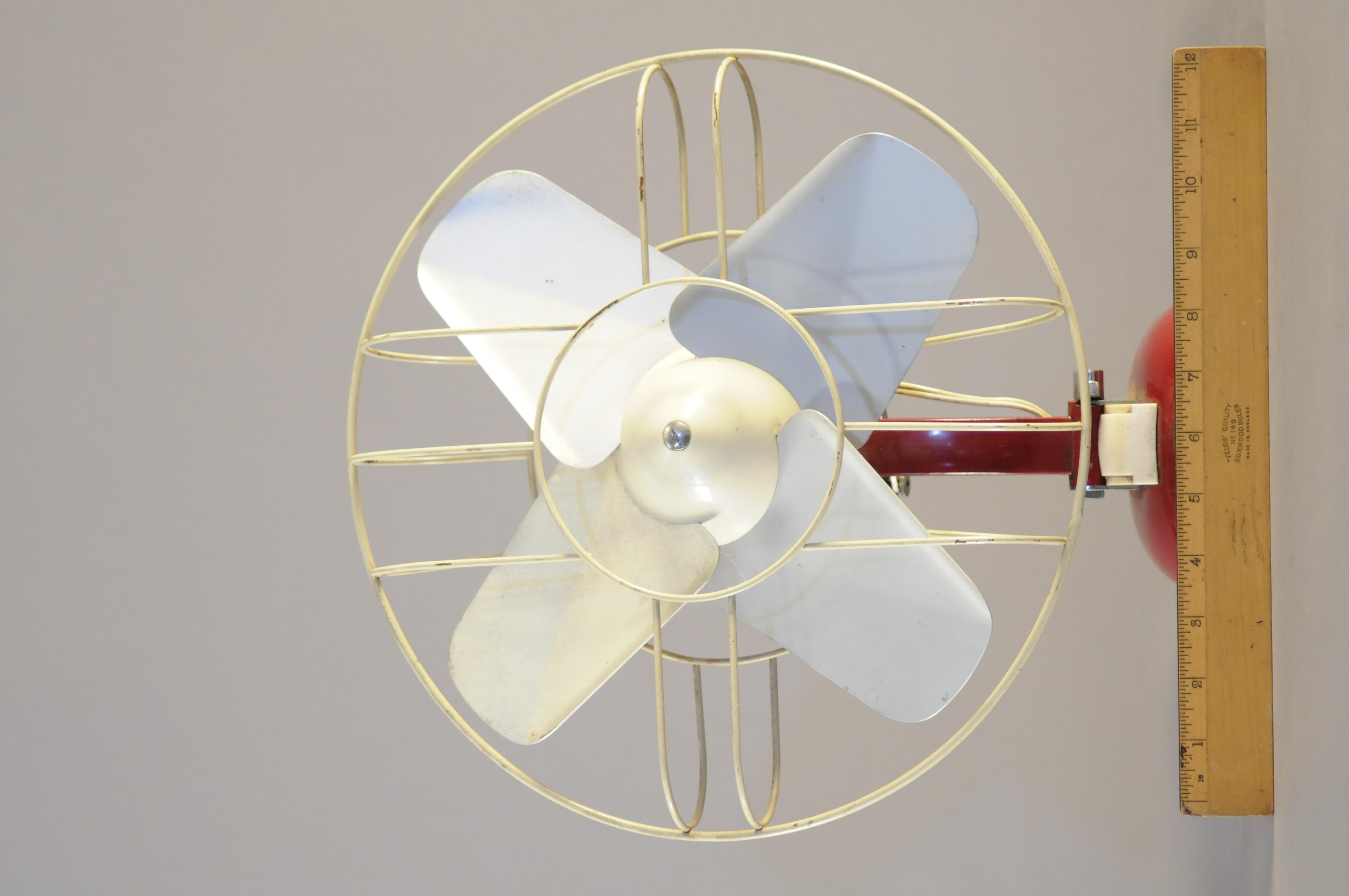 Red Fan _DSC9331