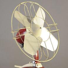 Red Fan _DSC9322.JPG