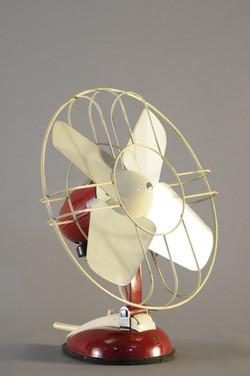 Red Fan _DSC9322