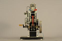 Scientific Model #5