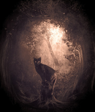 Mystic Meter: Explanation of Psychic Phenomena, Poltergeist