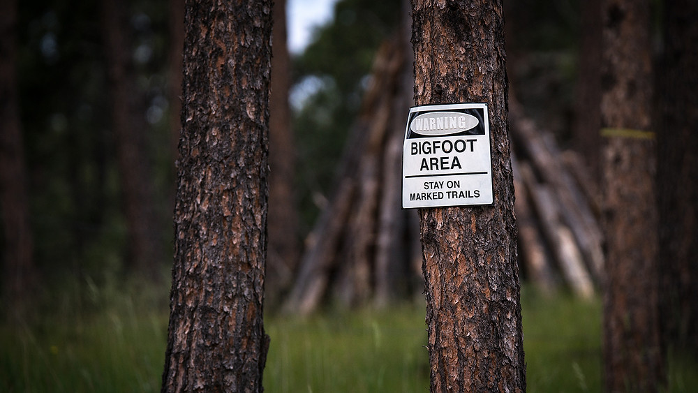 Warning! Bigfoot Area  Stay on The Market trails