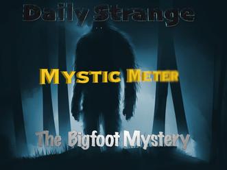 Mystic Meter: Focusing On The Bigfoot Mystery