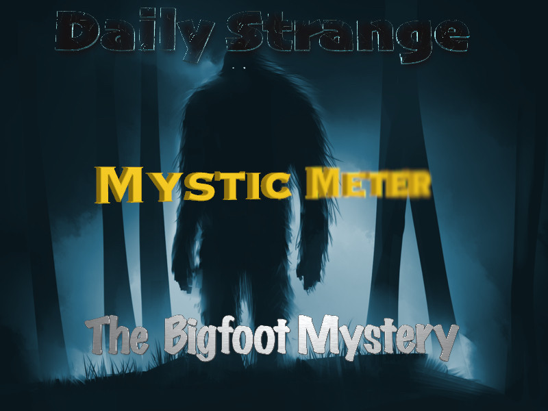 Mystic Meter: Focusing On The Bigfoot Mystery (Photo by AndyFil)
