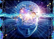méditation-cerveau.jpg