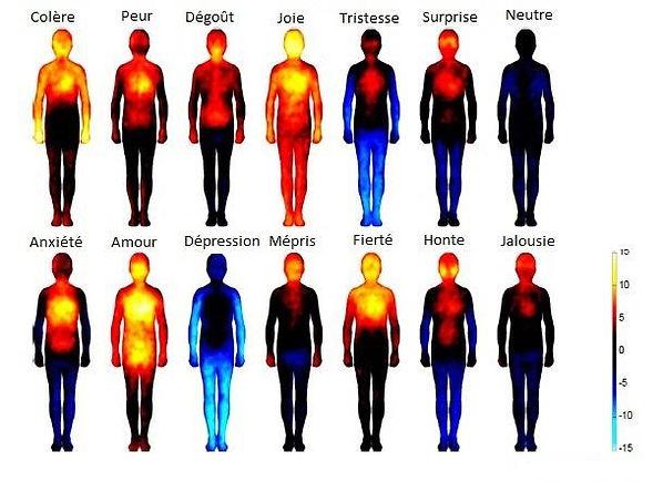 EmotionsCarte.jpg