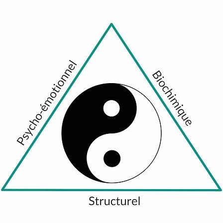 kinesiologie-ying-yang-1.jpg