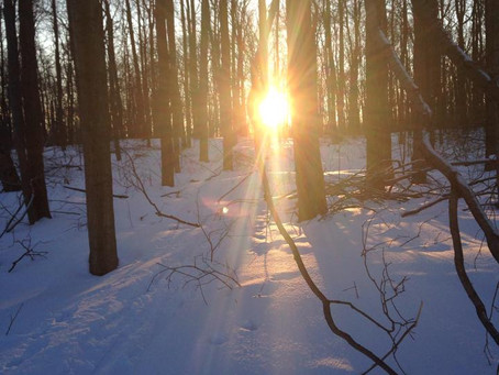 My Mental Health Journey: Raw & Uncut