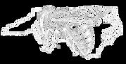 NCSBA_logo.black-on-transparent-700-reve