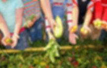 children gardening at iPlanets Academy