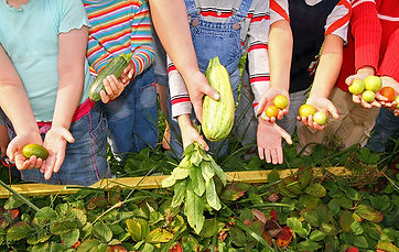 children gardening at iPlanets Academy