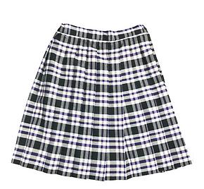 iPlanets Academy Knife Pleat Skirt