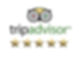 Pure Therapy Clinic Reviews