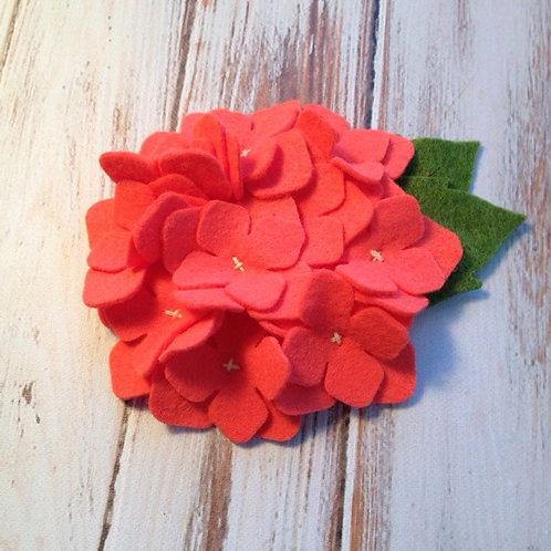 Soft Coral Hydrangea