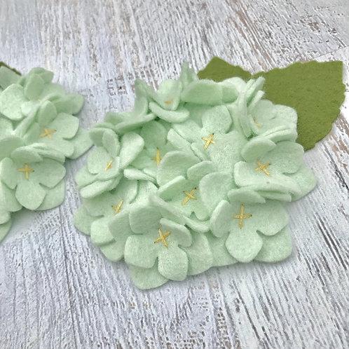 Hint of Mint Hydrangea