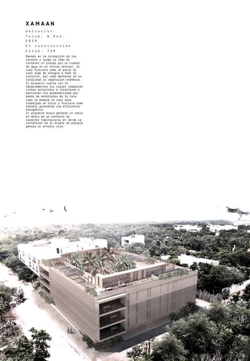 d.m.taller_page-0041.jpg