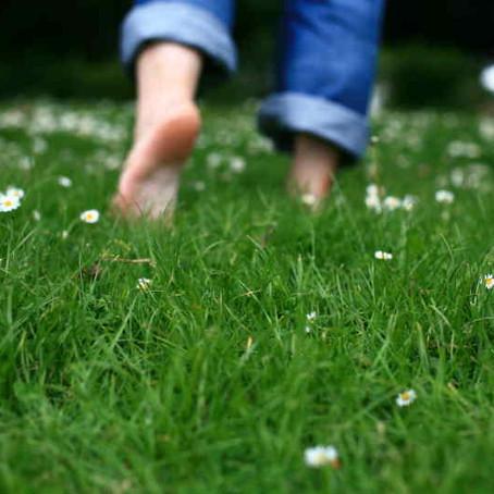 Meditation for Grounding Your Energy