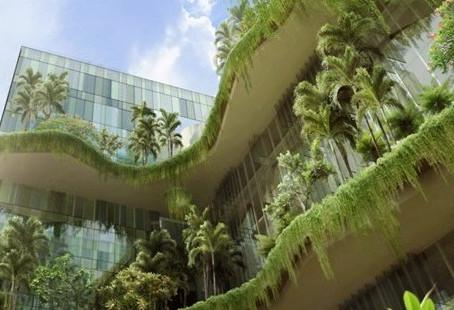 Arquitetura verde: entenda o que é e como o Brasil tem adotado essa tendência