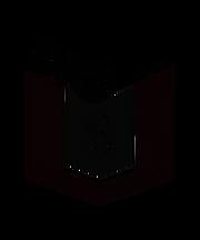 Big3_black_PNG.png