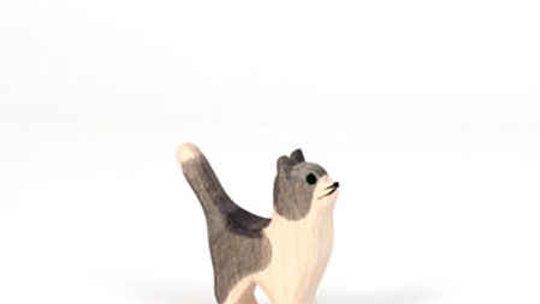 Ostheimer Gray Kitten