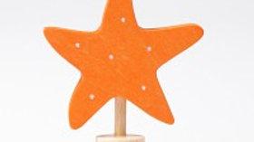 Grimm's Starfish
