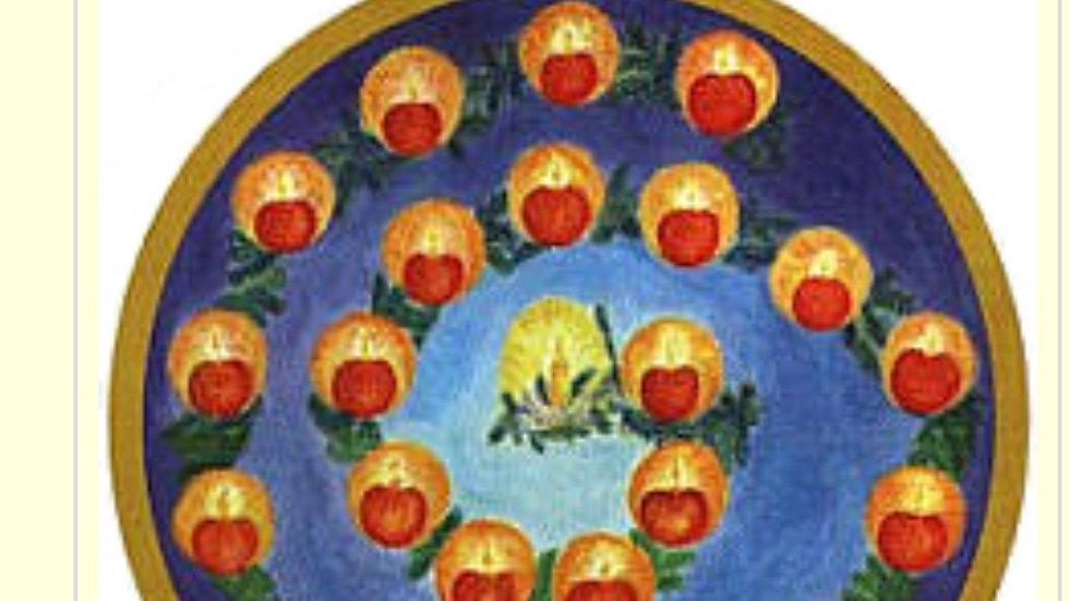 Advent Garden Calendar
