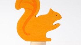 Grimm's Squirrel