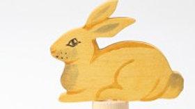 Grimm's Sitting Rabbit