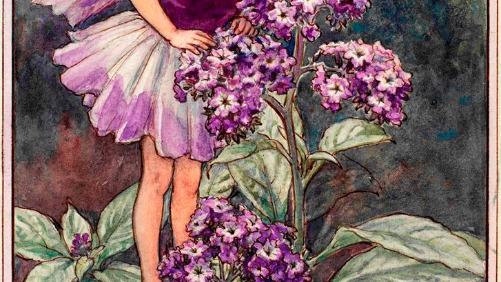 Lorna Spring