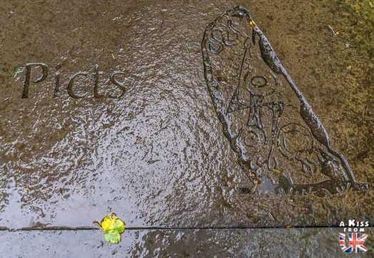 Fortingall Yew - A faire et à voir absolument dans le Perthshire en Ecosse ? Visiter le Perthshire et ses incontournables avec A Kiss from UK, le blog du voyage en Ecosse, Angleterre et Pays de Galles