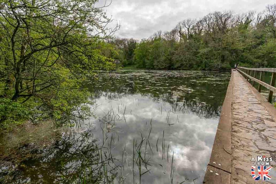 Lily Pounds - Que voir dans le Pembrokeshire au Pays de Galles ? Visiter le Pembrokeshire avec A Kiss from UK, guide & blog voyage sur l'Ecosse, l'Angleterre et le Pays de Galles.