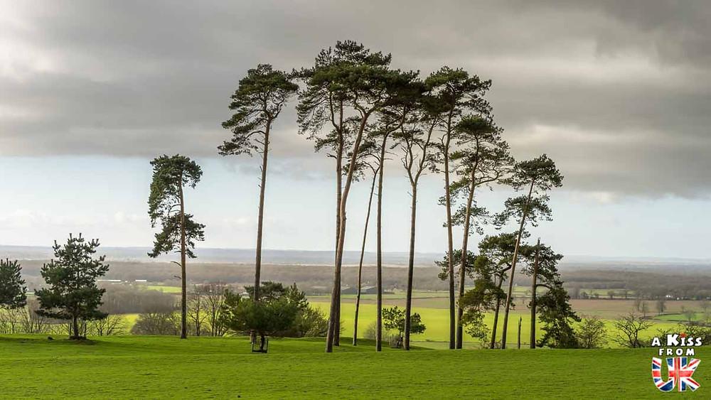 Les bois de Pluckley - Pluckley, le village le plus hanté d'Angleterre. Découvrez ma chasse aux fantômes à Pluckley dans le Kent. | Blog | A Kiss from UK
