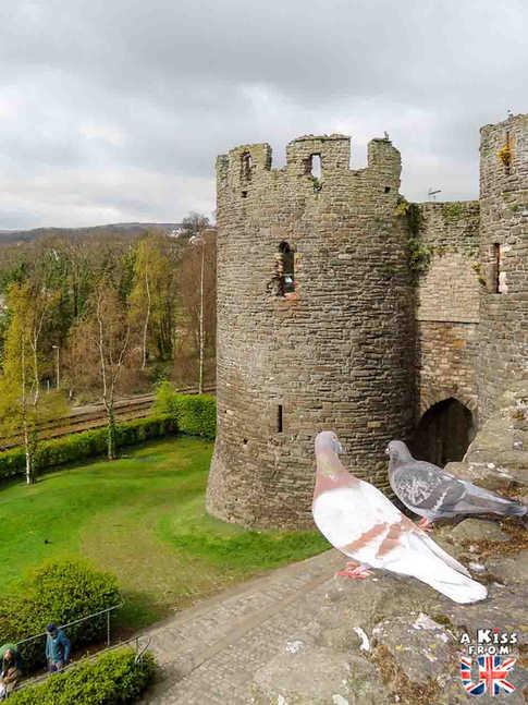 Conwy - Que voir dans le Parc National du Snowdonia au Pays de Galles ? Visiter le Snowdonia avec A Kiss from UK, blog du voyage en Ecosse, Angletere et Pays de Galles.