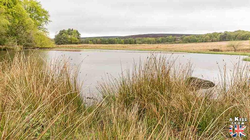 Longshaw - A faire et à voir absolument dans le Peak District en Angleterre. Visiter les plus beaux endroits du Peak District avec notre guide complet. A Kiss From UK, le blog du voyage en Angleterre.