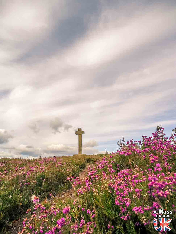 Les Bruyères en fleur du Yorkshire - Découvrez les plus beaux paysages d'Angleterre avec notre guide voyage qui vous emménera visiter les plus beaux endroits d'Angleterre.