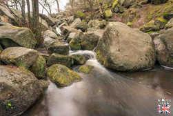 Padley Gorge - A faire et à voir dans le Peak District en Angleterre. Visiter les plus beaux endroits du Peak District avec notre guide complet.
