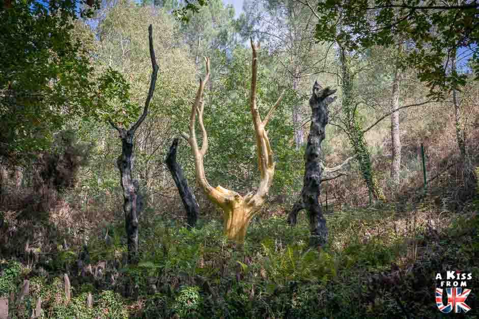 Visiter la forêt de Brocéliande et les lieux liés aux légendes arthuriennes situés dans les Cornouailles en Angleterre | Visiter la Bretagne pour retrouver les paysages de Grande-Bretagne  - Découvrez les plus beaux endroits de Bretagne et de Normandie qui font penser à l'Angleterre, à l'Ecosse ou au Pays de Galles |  A Kiss from UK - blog voyage