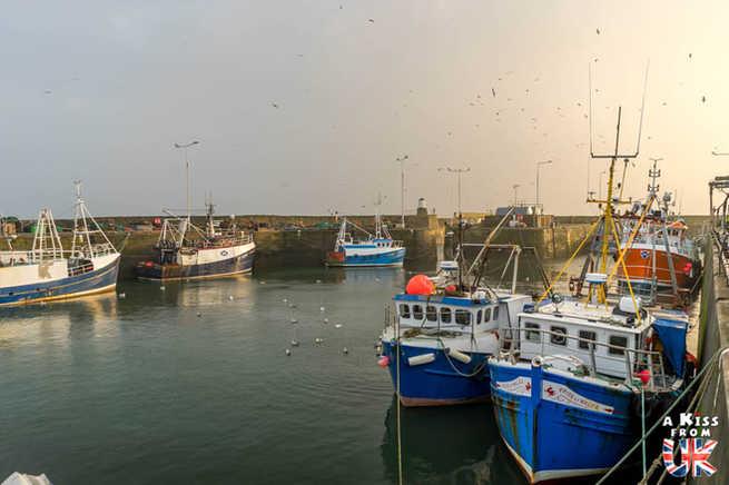 Pittenweem - Que voir et que faire dans la Péninsule de Fife en Ecosse ? Visiter la péninsule de Fife avec A Kiss from UK, le guide et blog du voyage en Ecosse.