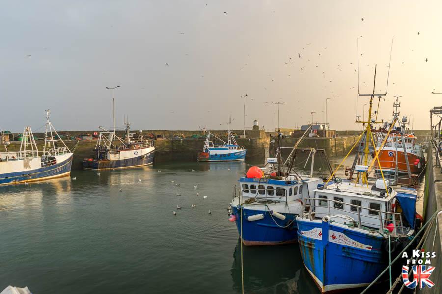 Pittenweem sur la péninsule de Fife -  50 photos qui vont vous donner envie de voyager en Ecosse après l'épidémie de coronavirus - Découvrez en image les plus beaux endroits d'Ecosse à visiter.