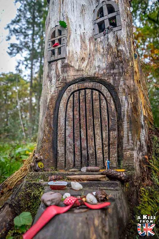 Doon Hill et Fairy Knowe - 50 endroits à voir absolument en Ecosse – Découvrez les lieux incontournables en Ecosse et les plus beaux endroits d'Ecosse à visiter pendant votre voyage | A Kiss from UK