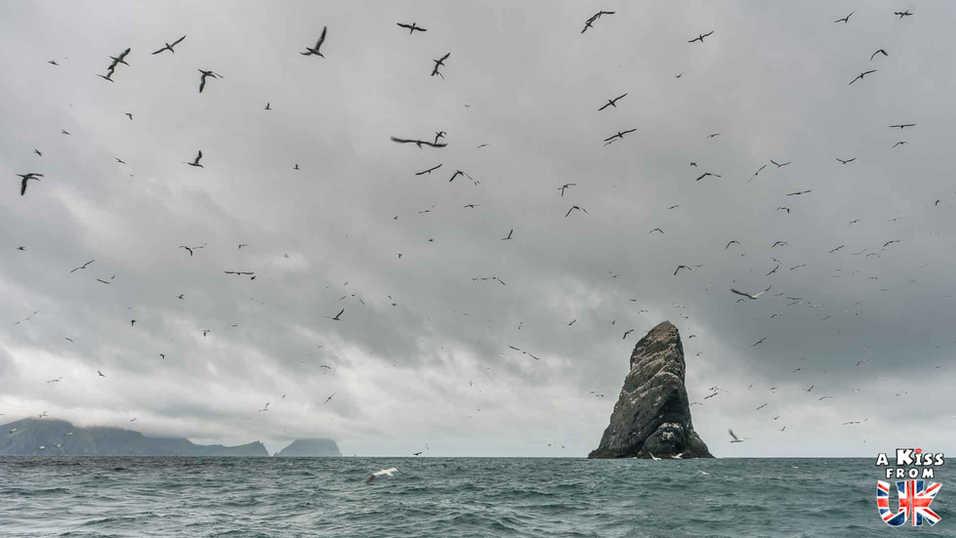 Stan An Amin sur St Kilda - Visiter l'archipel de St Kilda en Ecosse - Que voir sur l'île de St Kilda en Ecosse ? - A Kiss from UK, guide et blog voyage sur l'Ecosse.