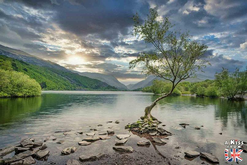 The Lone tree dans le Snowdonia - Les endroits à voir absolument au Pays de Galles en dehors de Cardiff – Découvrez quels sont les lieux incontournables au Pays de Galles et les plus beaux endroits du Pays de Galles à visiter pendant votre voyage   A Kiss from UK