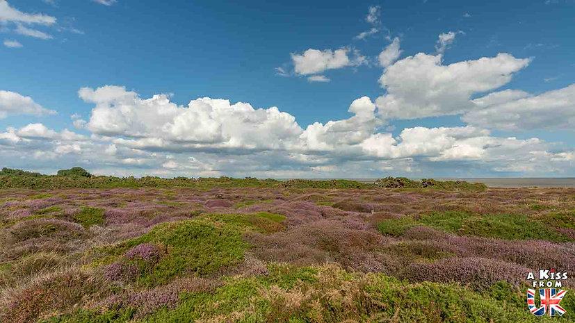 Dunwich Heath - Que voir dans le Suffolk en Angleterre ? Visiter le Suffolk avec A Kiss from UK, le guide et blog du voyage en Angleterre.