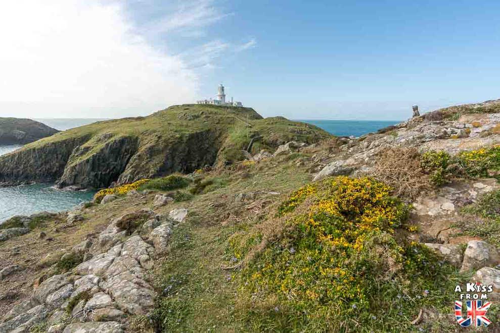 Strumbe Head Lighthouse - Que voir dans le Pembrokeshire au Pays de Galles ? Visiter le Pembrokeshire avec A Kiss from UK, guide & blog voyage sur l'Ecosse, l'Angleterre et le Pays de Galles.