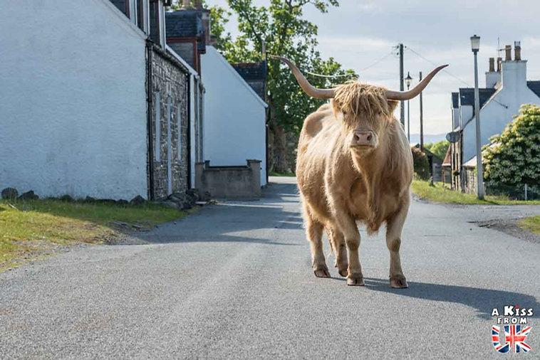 Duirinish - Visiter le Kyle of Lochalsh - Que faire et que voir sur l'île de Skye en Ecosse ? Visiter les plus beaux endroits de l'île de Skye avec notre guide complet.
