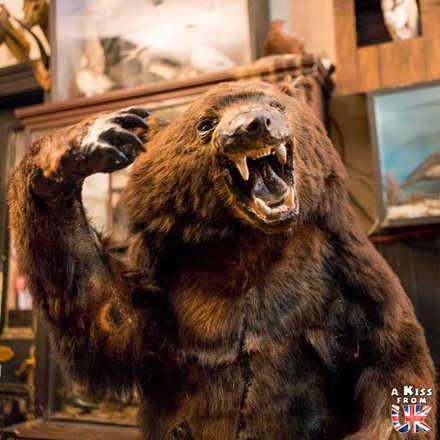The Drovers Inn - Découvrez les meilleurs pubs de Grande-Bretagne. Quels sont les meilleurs pubs d'Angleterre, d'Ecosse et du Pays de Galles ?