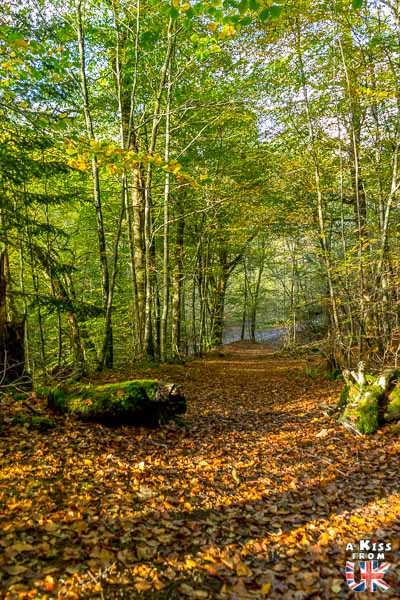 Pass of Killiecrankie - A faire et à voir absolument dans le Perthshire en Ecosse ? Visiter le Perthshire et ses incontournables avec A Kiss from UK, le blog du voyage en Ecosse, Angleterre et Pays de Galles
