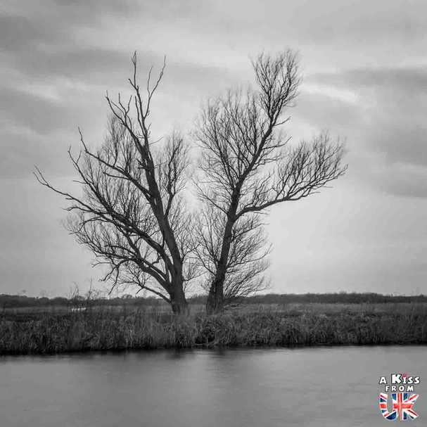 St Benet's Abbey - Que faire dans le Norfolk en Angleterre ? Visiter le Norfolk et les plus beaux endroits à voir dans le Parc National des Broads avec notre guide complet sur cette région d'Angleterre.