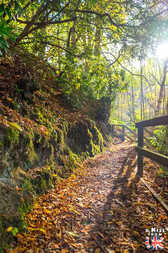 Autour de Pitlochry - A faire et à voir absolument dans le Perthshire en Ecosse ? Visiter le Perthshire et ses incontournables avec A Kiss from UK, le blog du voyage en Ecosse, Angleterre et Pays de Galles