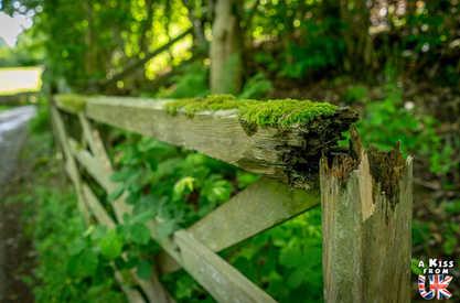 Borrowdale - Que voir absolument dans le Lake District en Angleterre ? Visiter le Lake District avec A Kiss from UK, le blog du voyage en Ecosse, Angleterre et Pays de Galles